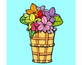 Paniere di fiori 3