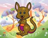Un canguro