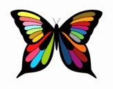 Farfalla 8