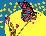 Farfalla su un ramo