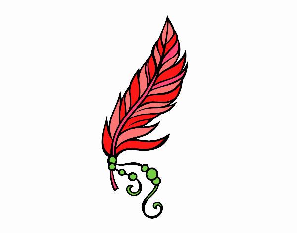 Piuma apache