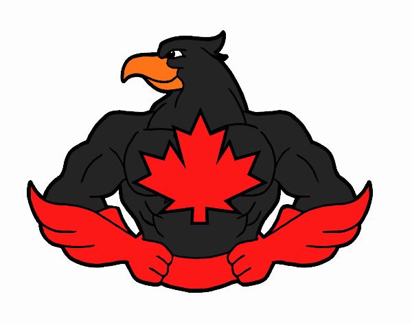 Super uccello