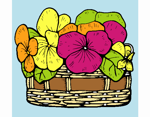 Paniere di fiori 12