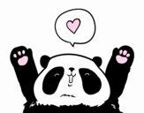Panda amore