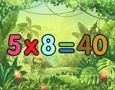 5 x 8