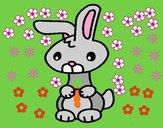 Art il coniglio