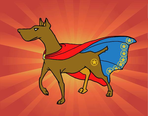 cane supereroe