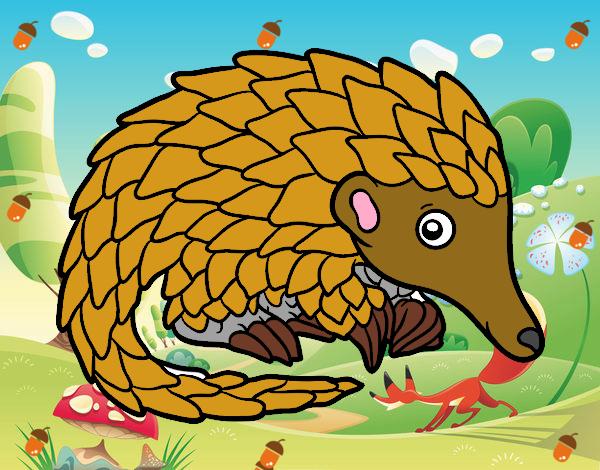 pangolino leo