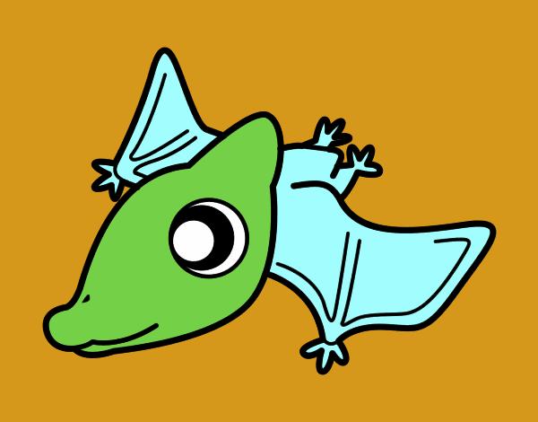 Bebè Pterodactylus