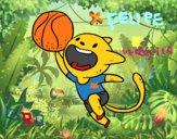 Gatto basket