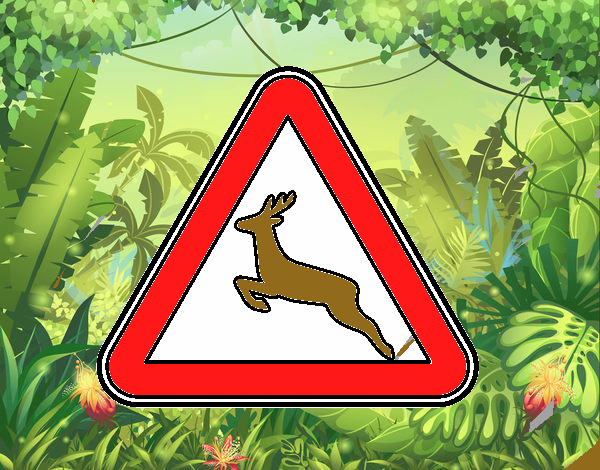 Disegno Passo animali selvatici pitturato su amirotto