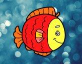 Pesce infanzia