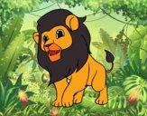 Il re della giungla