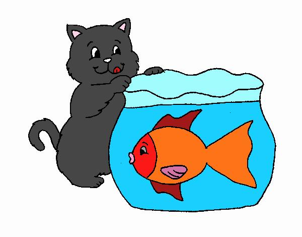 Disegno di gatto con salsiccia da colorare acolore - Allontanare i gatti dal giardino ...