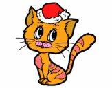 Un gatto Natale
