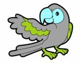 Pappagallo con le ali aperte