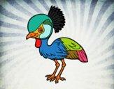 Gru coronata grigia