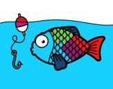 Pesce per prendere l'amo
