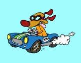 Cane da corsa