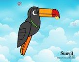 Uccello Tucano