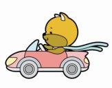 Cat di guida