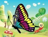 Disegno Farfalla sinistra pitturato su fabio1970