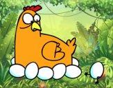 Incubazione di pollo