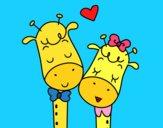 Giraffes amore