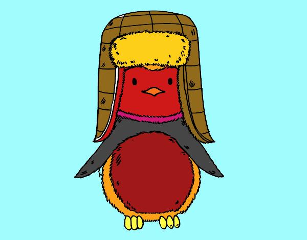 Disegno pinguino con il cappello colorato da utente non for Disegno pinguino colorato