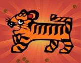 Segno di tigre