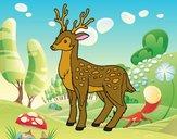 Un giovane cervo