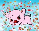 Piggy bambino