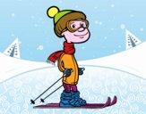 Sciatore professionale
