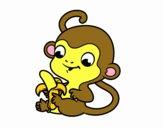 Scimmia con banana