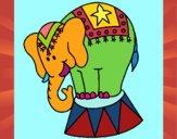 Elefante in scena