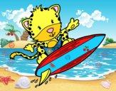 Ghepardo surfista