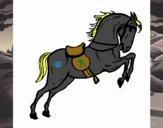 Cavallo che salta con una sedia