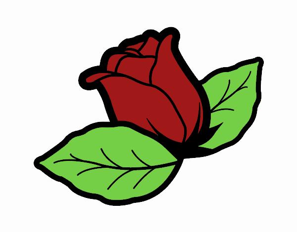 Disegno Di Rosa Con Foglie Da Colorare Acolore Com: Disegno Rosa Con Foglie Colorato Da Utente Non Registrato