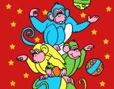 Scimmie giocoliere
