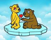 Coppia di orsi innamorati