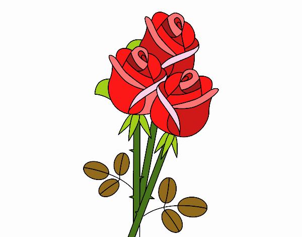 Disegno un mazzo di rose colorato da utente non registrato for Disegni del mazzo del cortile