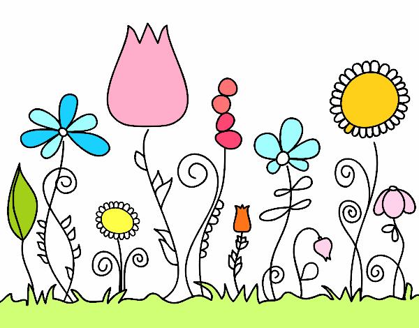 Disegno fiori di bosco colorato da utente non registrato for Fiori di agosto