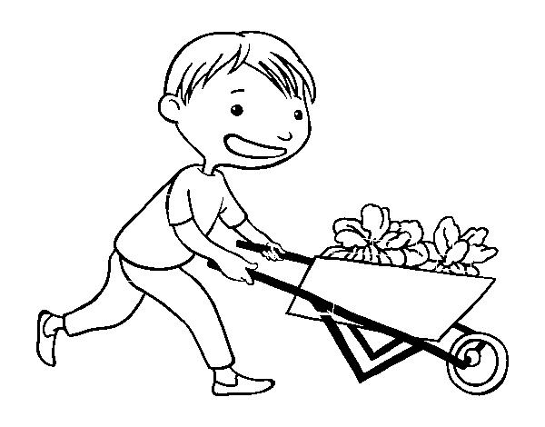 Disegno Di Bambino Con Carretto Da Colorare Acolore Com