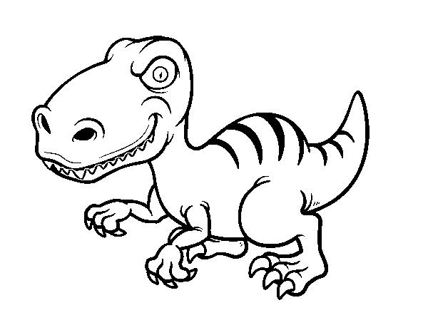 Disegno Di Dinosauro Velociraptor Da Colorare Acolore Com