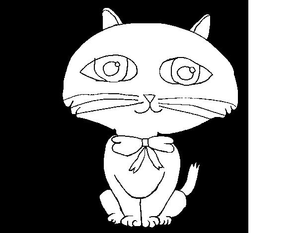 Disegno Di Gatto Con Lunghi Baffi Da Colorare Acolore Com