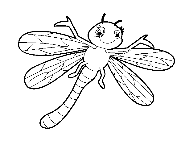 disegno di libellula intantile da colorare  acolore