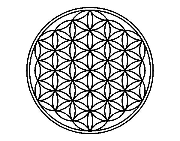 Disegno Di Mandala Fiore Di Vita Da Colorare Acolorecom