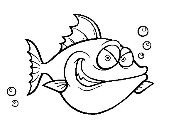 Disegno Di Pesce San Pietro Da Colorare Acolore Com