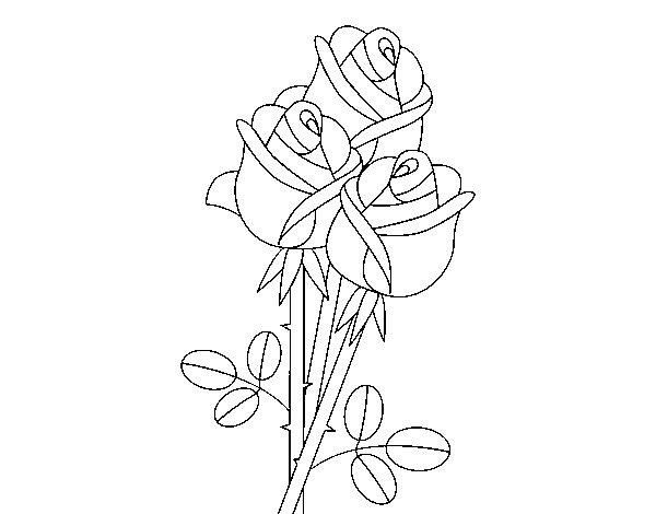 Mazzo Di Fiori Da Colorare: Disegno Di Rosa Con Foglie Da Colorare Acolore Com