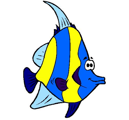 Disegno Pesce Tropicale Colorato Da Utente Non Registrato Il 13 Di